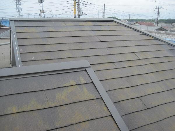 愛知県みよし市 屋根塗装 屋根・外壁診断0円 症状 色褪せ 苔 藻 サビ 変色